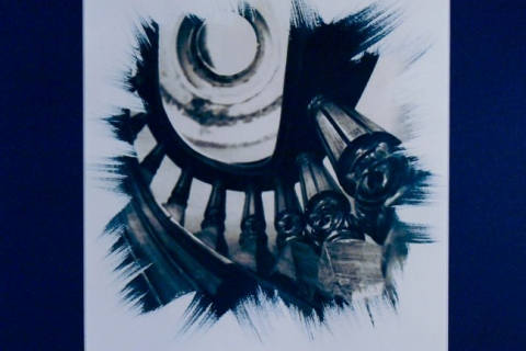 cyanotype-01