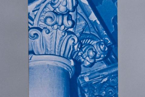 cyanotype-11