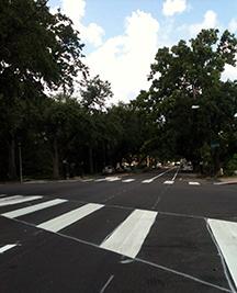 esplanade-bike-lane