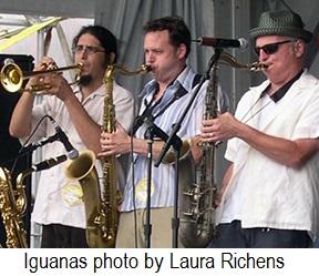 Iguanas-LauraRichens