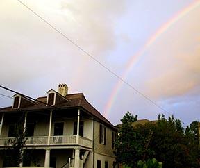 1300_Moss_rainbow1