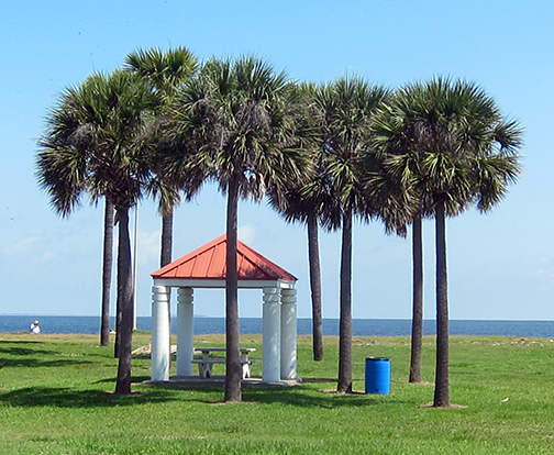 lakefront-palms-hut