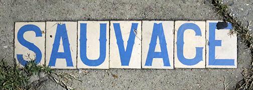 Sauvage-2014dec15