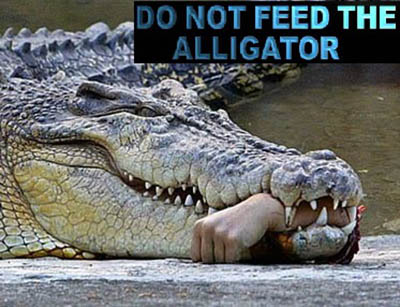 An alligator will absolutely bite the hand that feeds it.