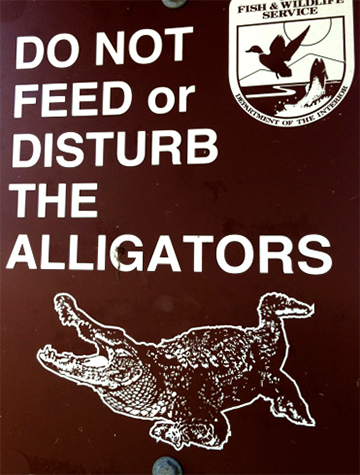 dont-feed-them