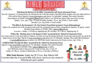 Bible Study @ Online