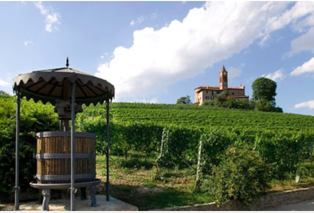 Piedmont region Nebbiolo