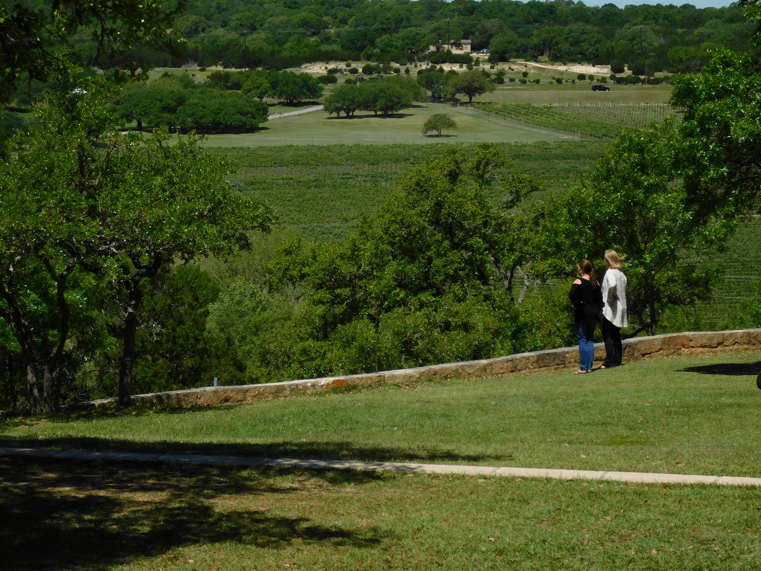 Strolling through Texas wine Hill Country