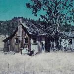 Thumberg house salt creek