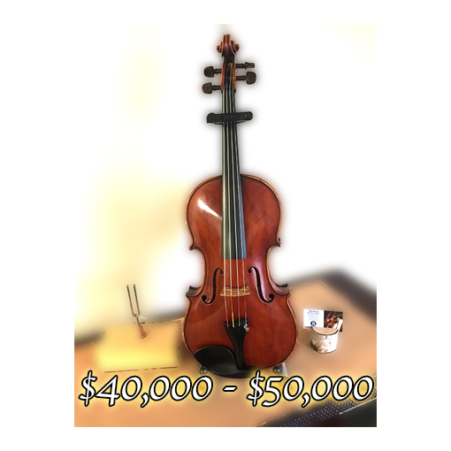 Genuzio Carletti Viola