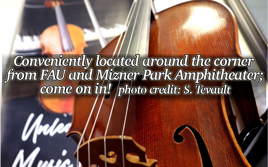 Barnes Violins 2021: unleash the music within!