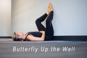 butterfly up the wall