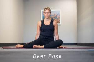 deer pose