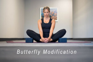 Butter fly modification