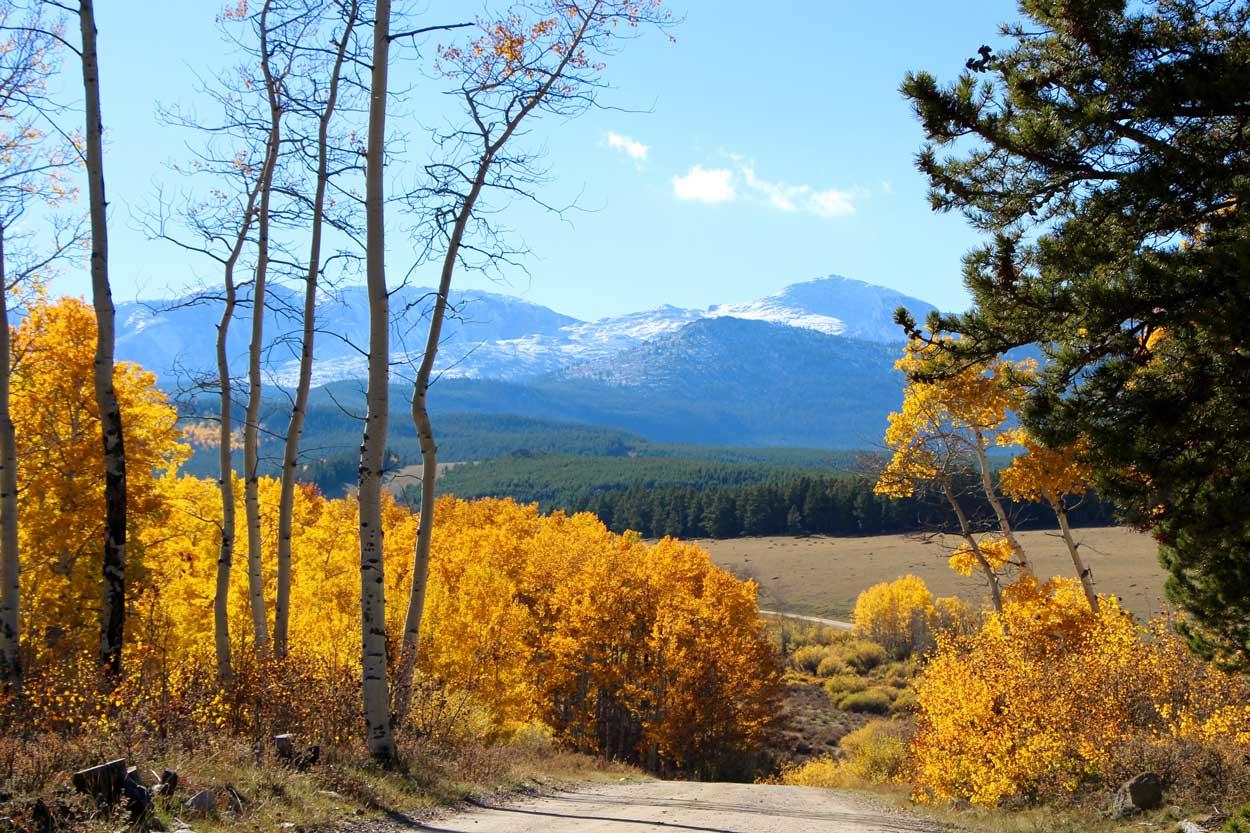 fall-drive-bighorn-mountains