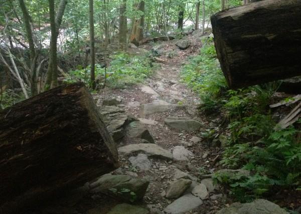 White Oak Canyon- path