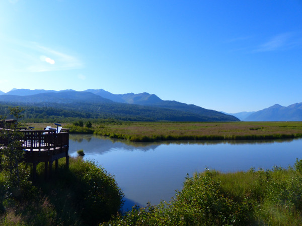 Potter Marsh- boardwalk and view