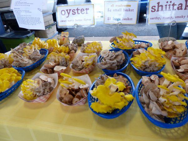 Farmers Market- mushrooms