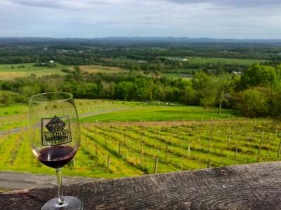 Bluemont Vineyard- view