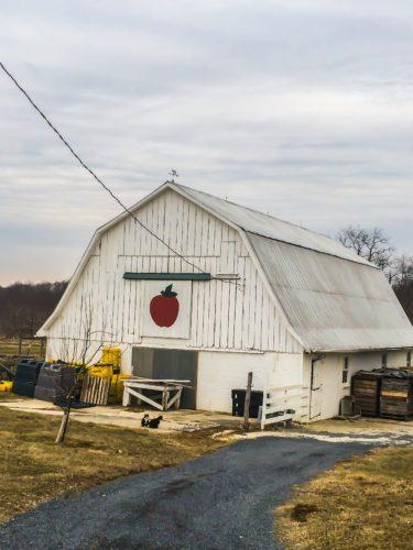 Frederick agritourism- The barn at Distillery Lane Ciderworks
