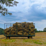 Frederick County, MD: An Agritourism Road Trip