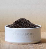 TerraSoul Organic Black Sesame Seeds