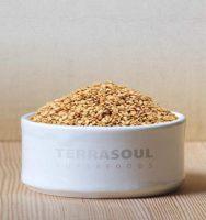 TerraSoul Organic Raw Golden Flax Seeds