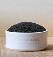 TerraSoul Organic Black Cumin Seed