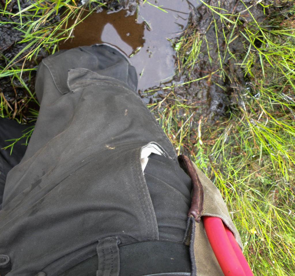 7Song bogged down in an Adirondacks bog