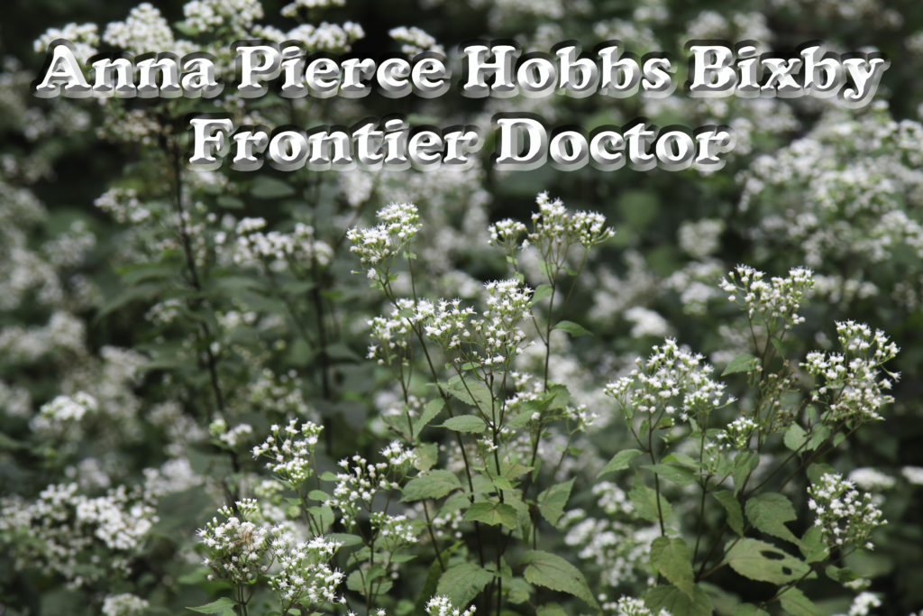 Anna Pierce Hobbs Bixby Milk Sickness
