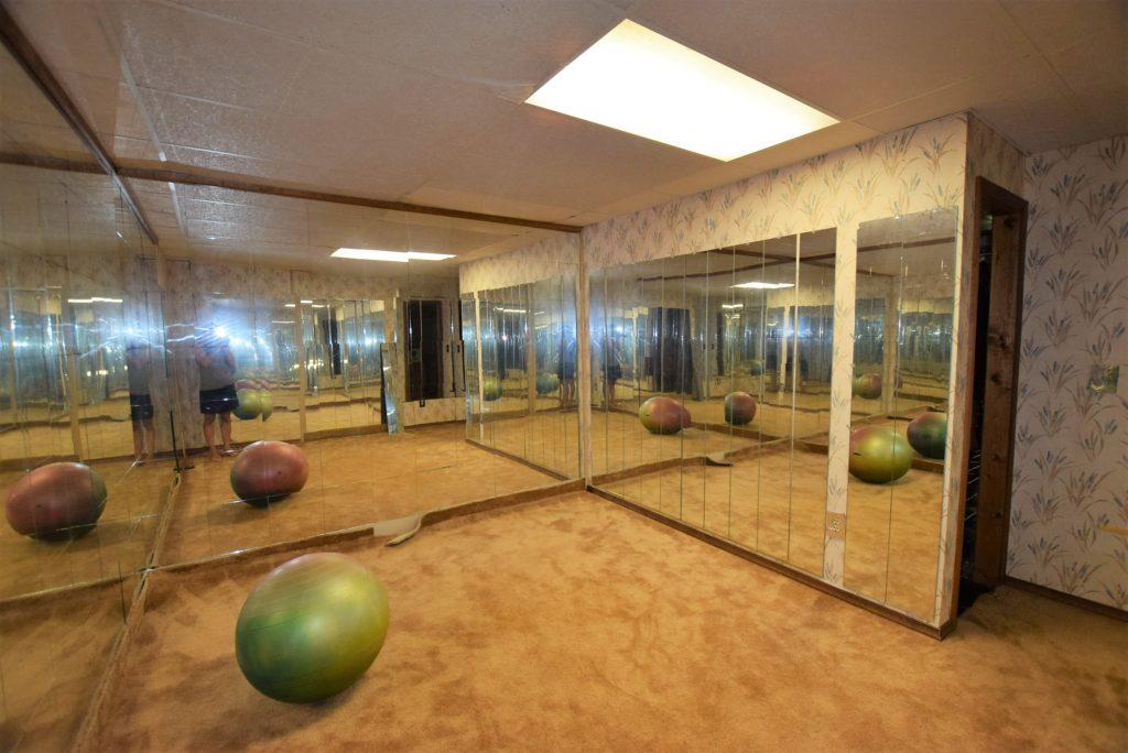 mirrors gym