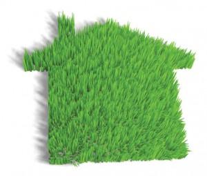 Home Lawn Care