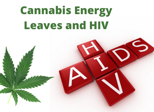 Cannabis Energy Leaves and HIV