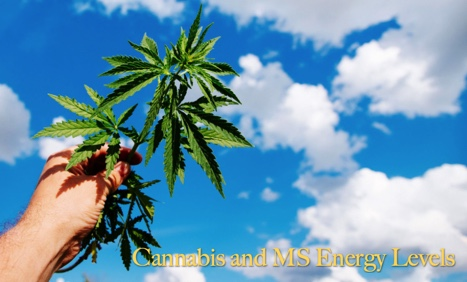 Cannabis and MS Energy Levels