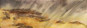 Rain on Dartmoor