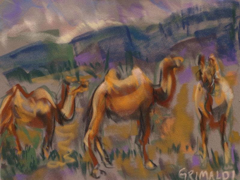 Susan Ross Grimaldi, Camels in Mongolia