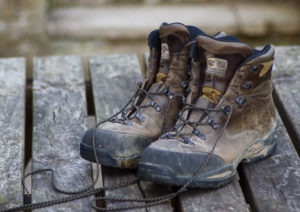 Hiking For Better Health – 3 Great Reasons to Start Hiking