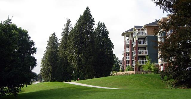 Victoria Hill view