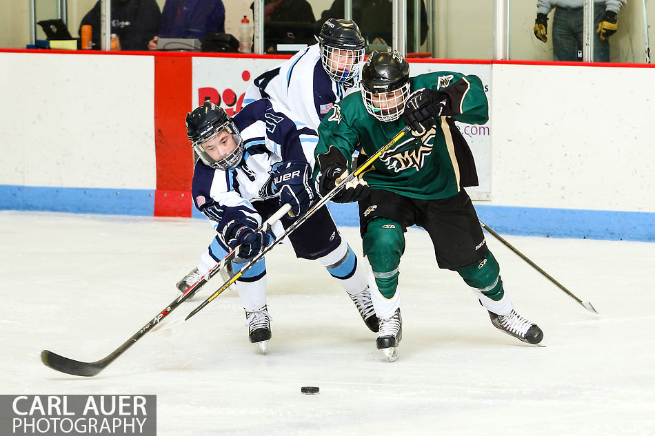 10 Shot - HS Hockey - Mountain Vista at RV