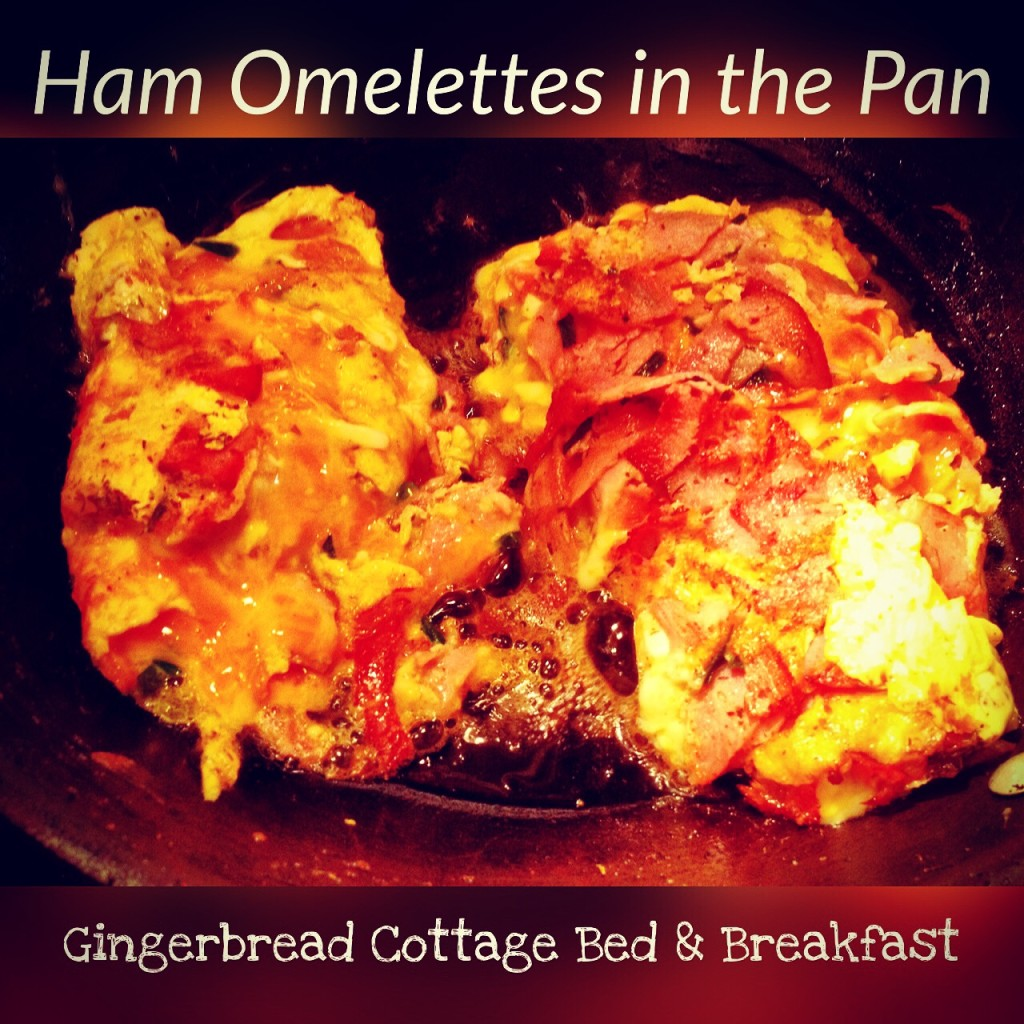 Ham Omelette du Fromage in the Pan