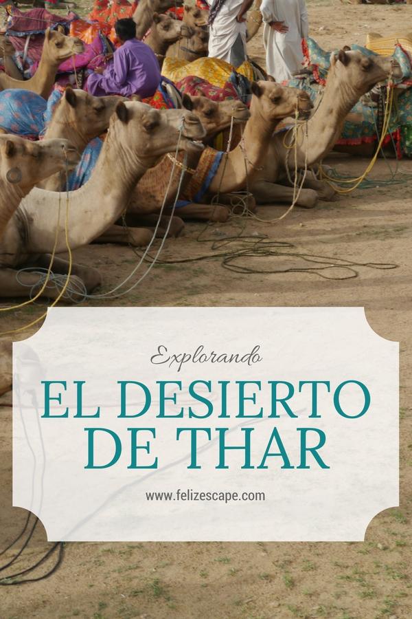 Explorando el Desierto de Thar - FelizEscape.com