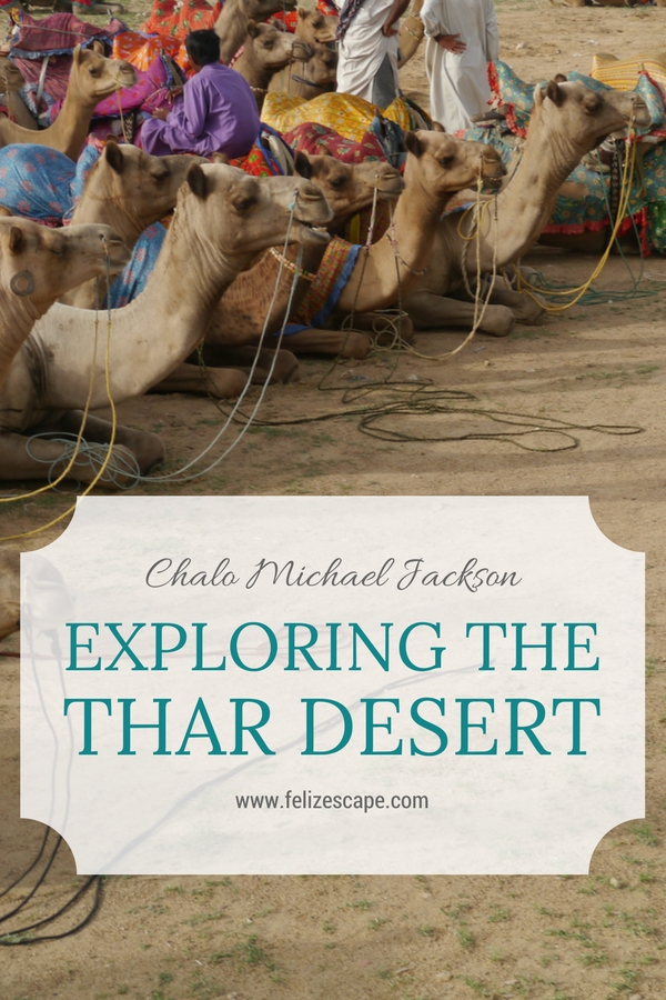 Exploring the Thar Desert - FelizEscape.com