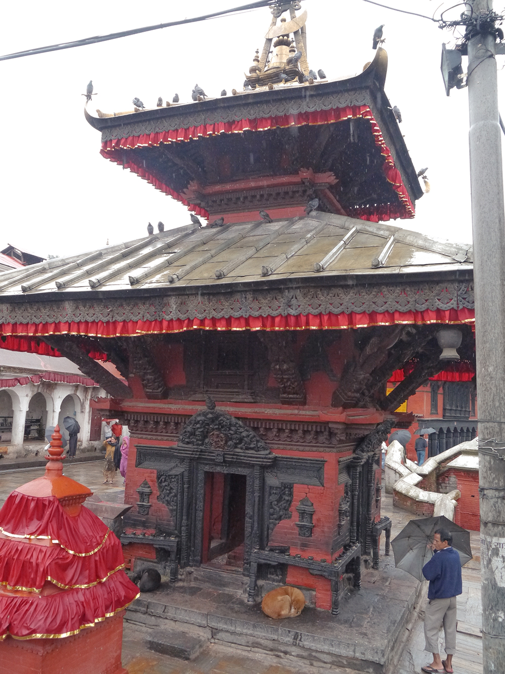 Trip to Nepal, nepal tourism, travel nepal, Kathmandu, Pashupatinath, activities in Kathmandu