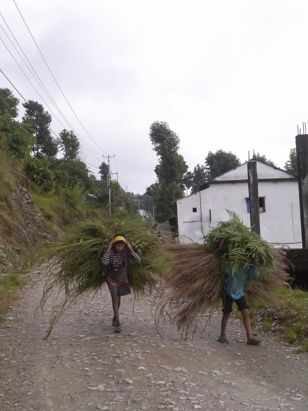Trip to Nepal, nepal tourism, travel nepal, Pokhara, Sarangkot, hike in sarangkot