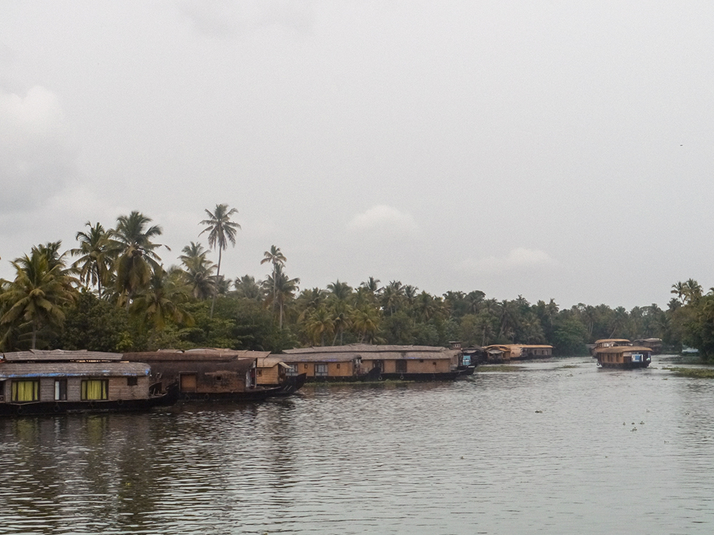 Kerala, allepey, allapuzha, backwaters, india, hotels in allepey, boat for backwaters