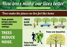 HOW TREES MAKE OUR LIVES BETTER