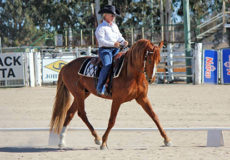Western Dressage in the Desert 2021