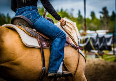 2021 Western Dressage in the Desert Show Results