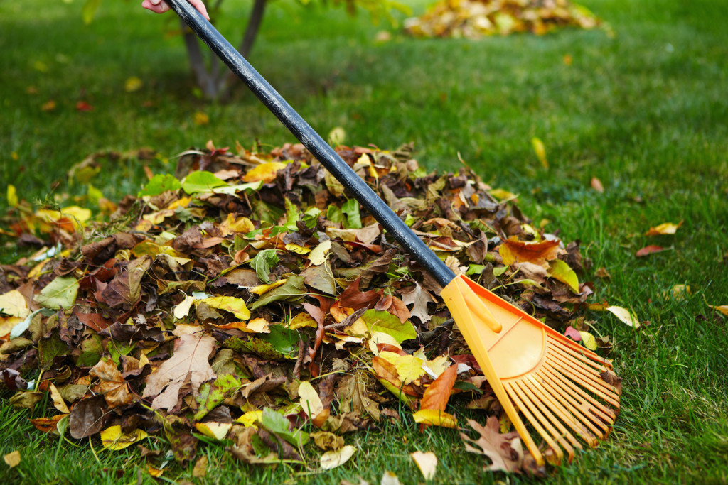 Even raking the leaves in the garden is one of the healthy fall habits.