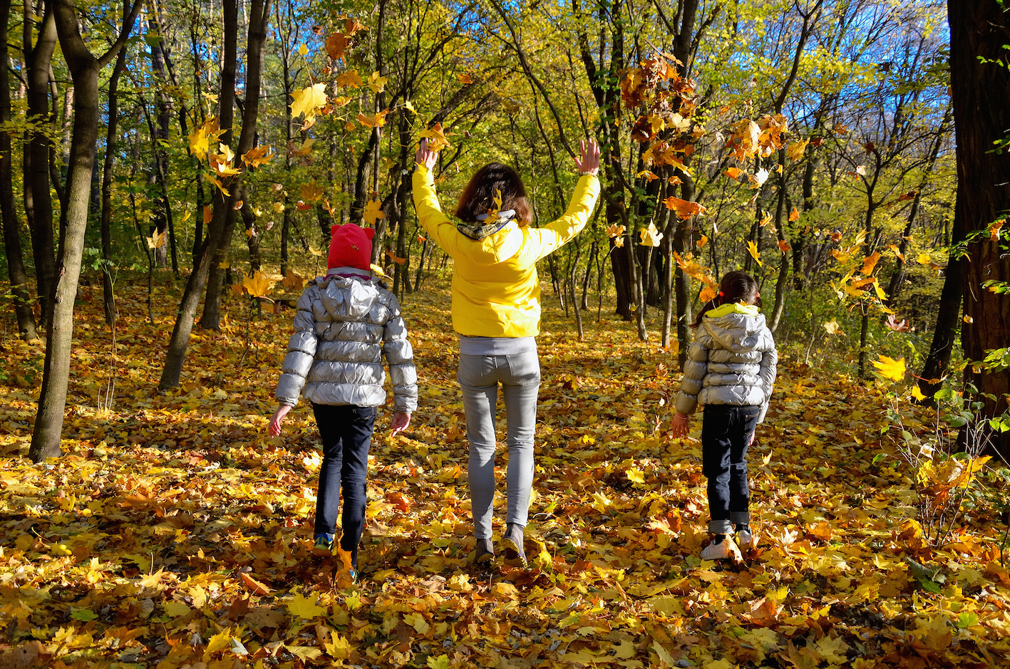 Family Having Fun In Autumn Forest Playing And Throwing Leaves